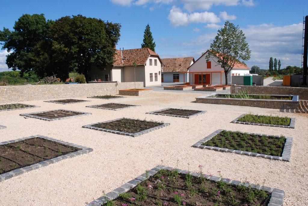 III. ütem: Arborétum Gyógynövénykert
